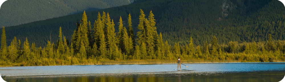 bamboo paddle board on lake with trees