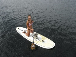 paddle boards for sale Walmart review