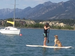 review Best Stand Up Paddleboard